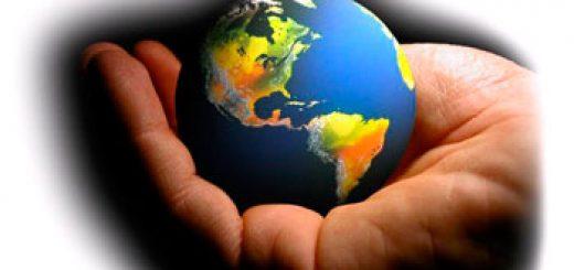 Назначение экологической экспертизы