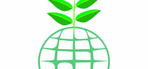 Экологические исследования в Мурманске