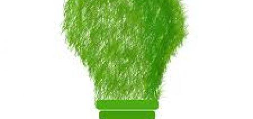 Инженерно-экологические изыскания тендер закупка