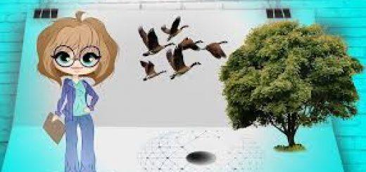 Проект экологические изыскания