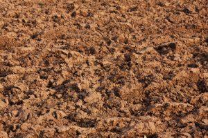 Оценка загрязнения почв