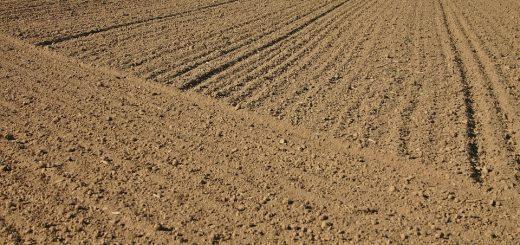 Восстановление нарушенной земельной почвы