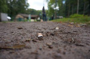 Загрязнение почвы