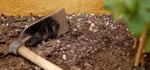 Охрана почв от загрязнения