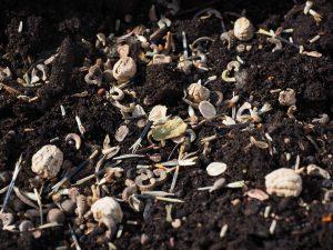 Категории загрязнения почв