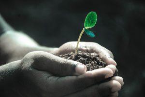 Защита земли от загрязнения