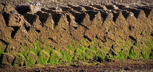 Загрязнение почв