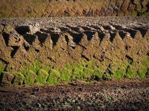 Истощение почв