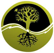Проведение экологических анализов