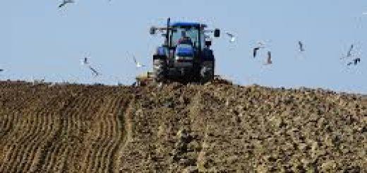 Методы исследования обработки почвы