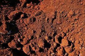 Причины изменения почвенных покровов в городе Тула