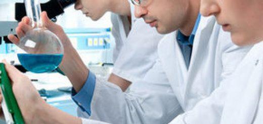 Проведение качественного и количественного анализа проб почвы