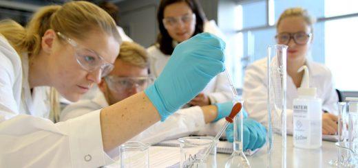 Исследование почвы в лаборатории
