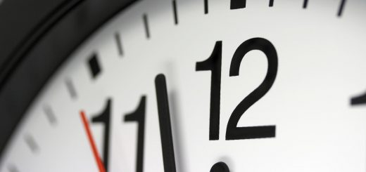 Определение срока действия протоколов лабораторных исследований почвы