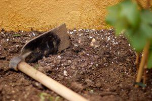 Проведение анализов почвы