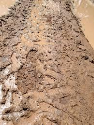 Виды исследования почвы