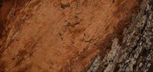 Комплексный анализ почвы