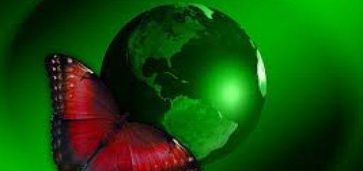 Способы экологического мониторинга