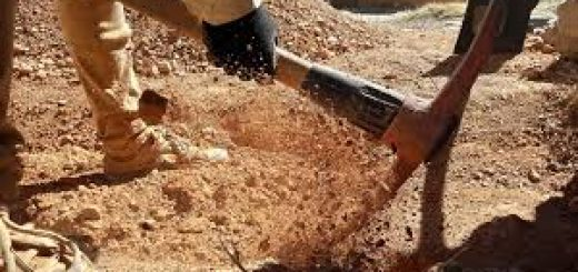 Виды анализа почвы
