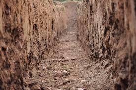 Пробы почвы на анализ