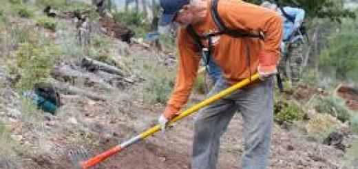 Проблема экологической оценки и мониторинга почв