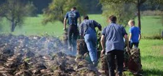 Методы почвенного мониторинга