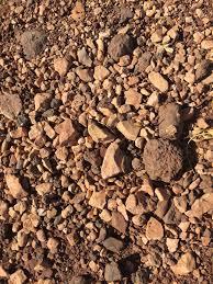 Образец почвы исследований