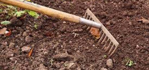 Методы анализа состава почв