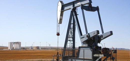 Особенности нефтеэкологического мониторинга почв
