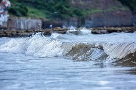 Мониторинг морской среды