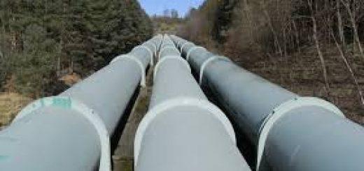 Экологический мониторинг подводных переходов транспорта газа