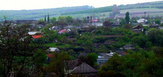 Экологический мониторинг населенных пунктов