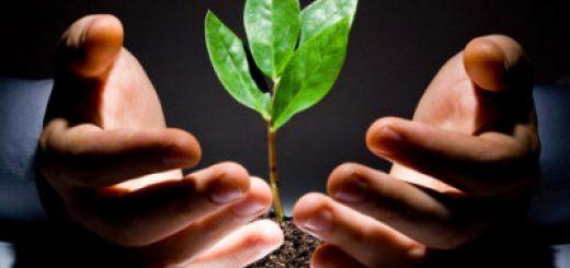 Экологический мониторинг техносферы