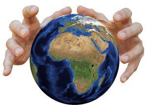 Основные цели мониторинга экосистемы