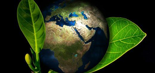 Глобальный экологический мониторинг окружающей среды