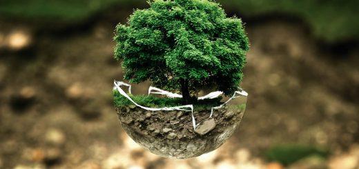 Методы мониторинга среды обитания