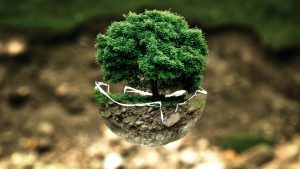 Экологический мониторинг окружающей природной среды