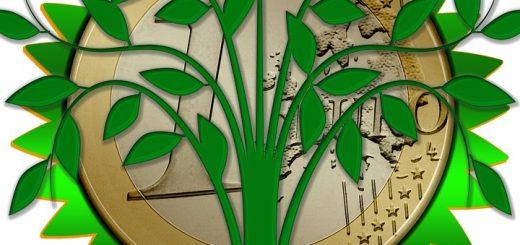Экология и экологический мониторинг