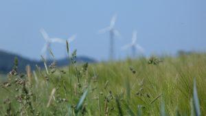 Мониторинг окружающей среды природных объектов