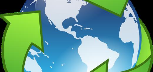 Внештатные экологические услуги ― выгоды и преимущества