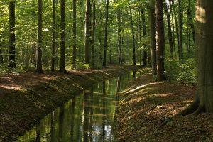 Мониторинг гидрогеологической среды