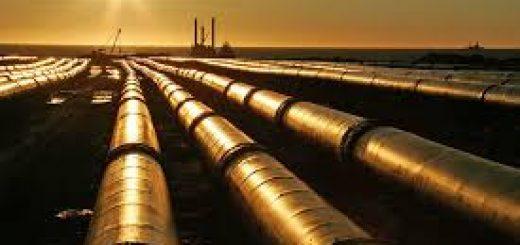 Экологическая экспертиза нефтепровода