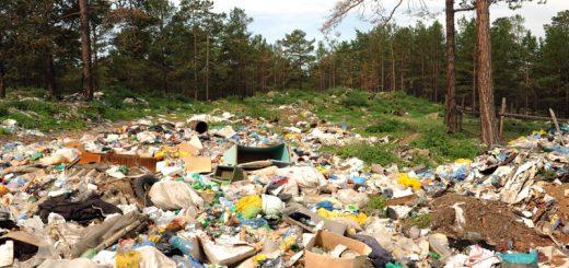 Оценка экологического воздействия: точно и по существу