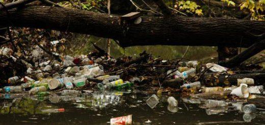 Оценка экологического ущерба от загрязнения поверхностных вод: основные данные