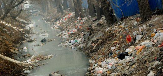 Расчет размера вреда причиненного окружающей среде
