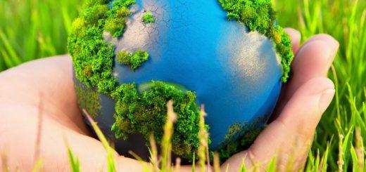 Оценка экологического влияния производственного комплекса