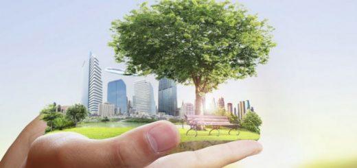 Оценка величины экологического ущерба