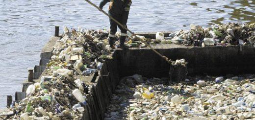 Расчет экологического вреда: цена