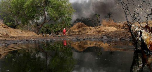 Экологический ущерб
