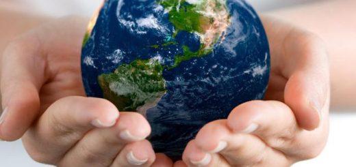 Оценка накопленного экологического ущерба: что это такое